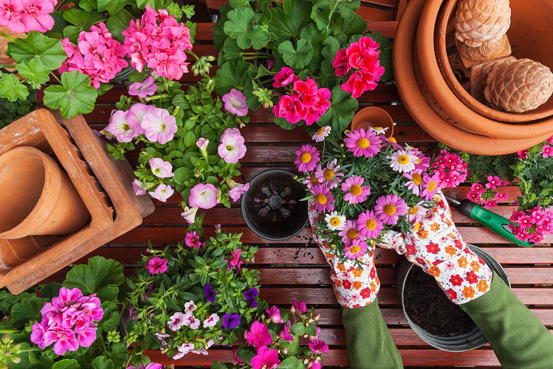 Gardening Kit For Mum Better Homes And Gardens