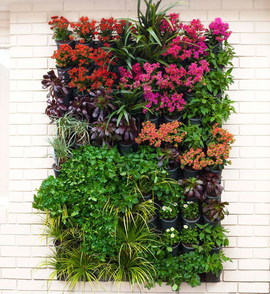 Quirky Vertical Gardens Better Homes And Gardens