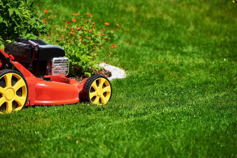 How To Care For Your Lawn In Winter Better Homes And Gardens