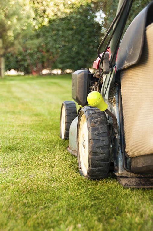 Lawn Care Checklist Diy Gardening Craft Recipes