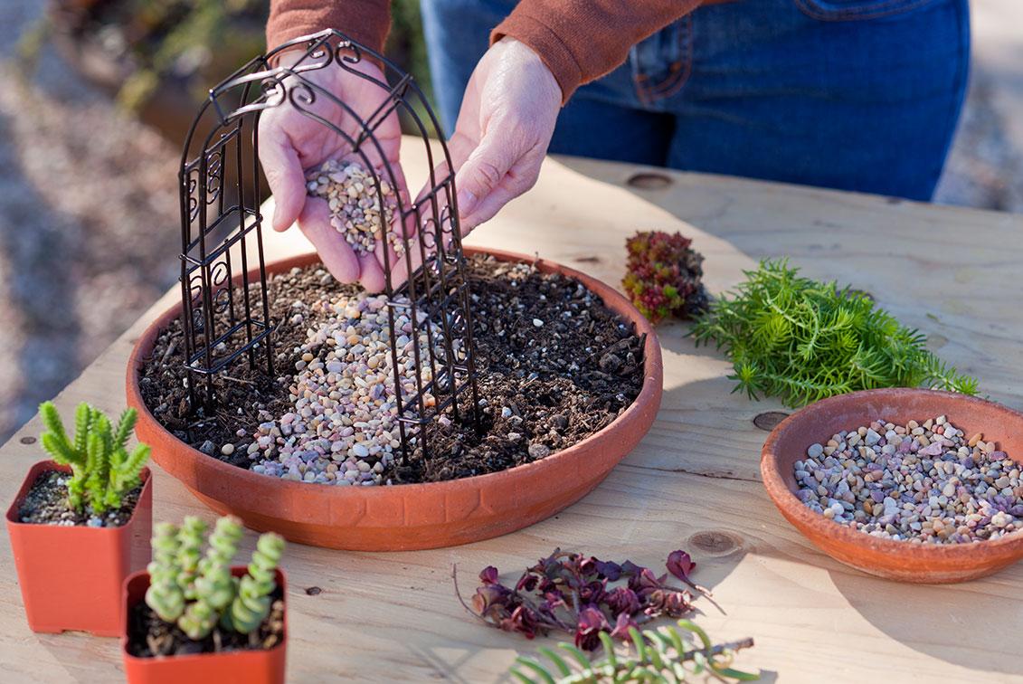 Do It Yourself Garden: Simple Do-it-yourself Mini Succulent Garden