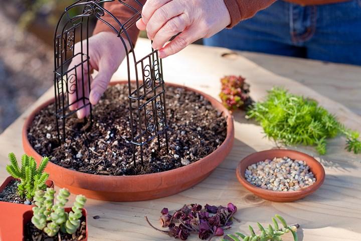 Simple Do It Yourself Mini Succulent Garden Better Homes