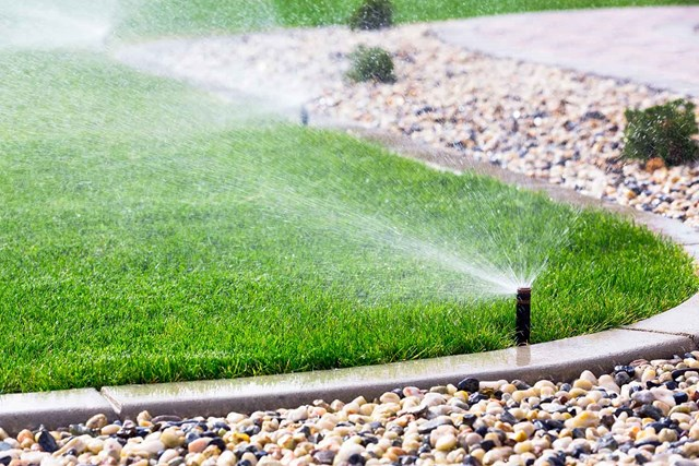 Why you should install an irrigation system | Better Homes and Gardens