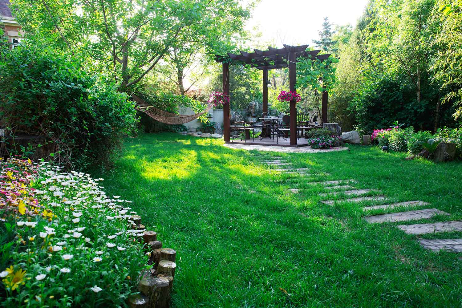 Plants that could cause problems in your backyard | Better ...