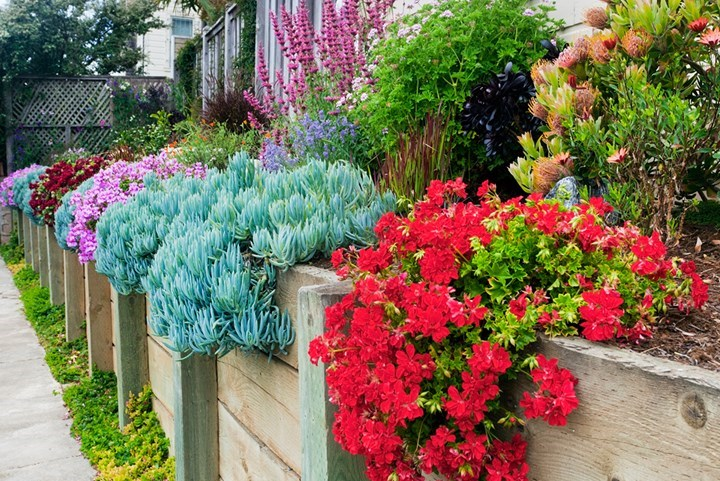 Four Landscaping Ideas To Start In Autumn Better Homes And Gardens