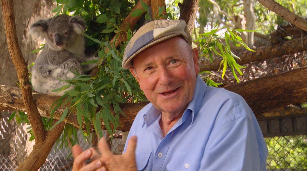 Port Macquarie Koala Hospital Better Homes And Gardens