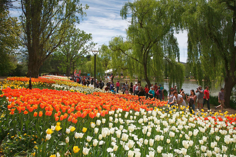The Must See Flower Festivals In Australia Better Homes And Gardens