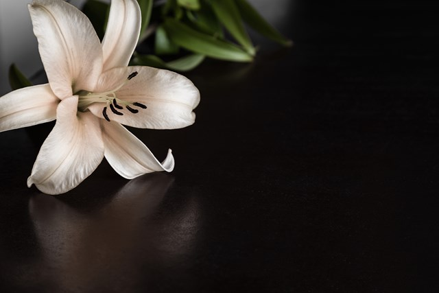 How much does a funeral cost: funeral prices Australia