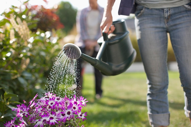 без бейджика, фото мужчина поливает цветы подсматривает одной телкой