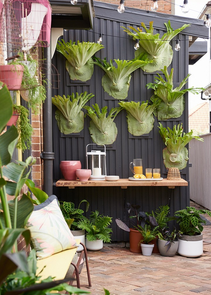 Courtyard Makeover 6 Ways To Give Your Small Outdoor Space A Revamp