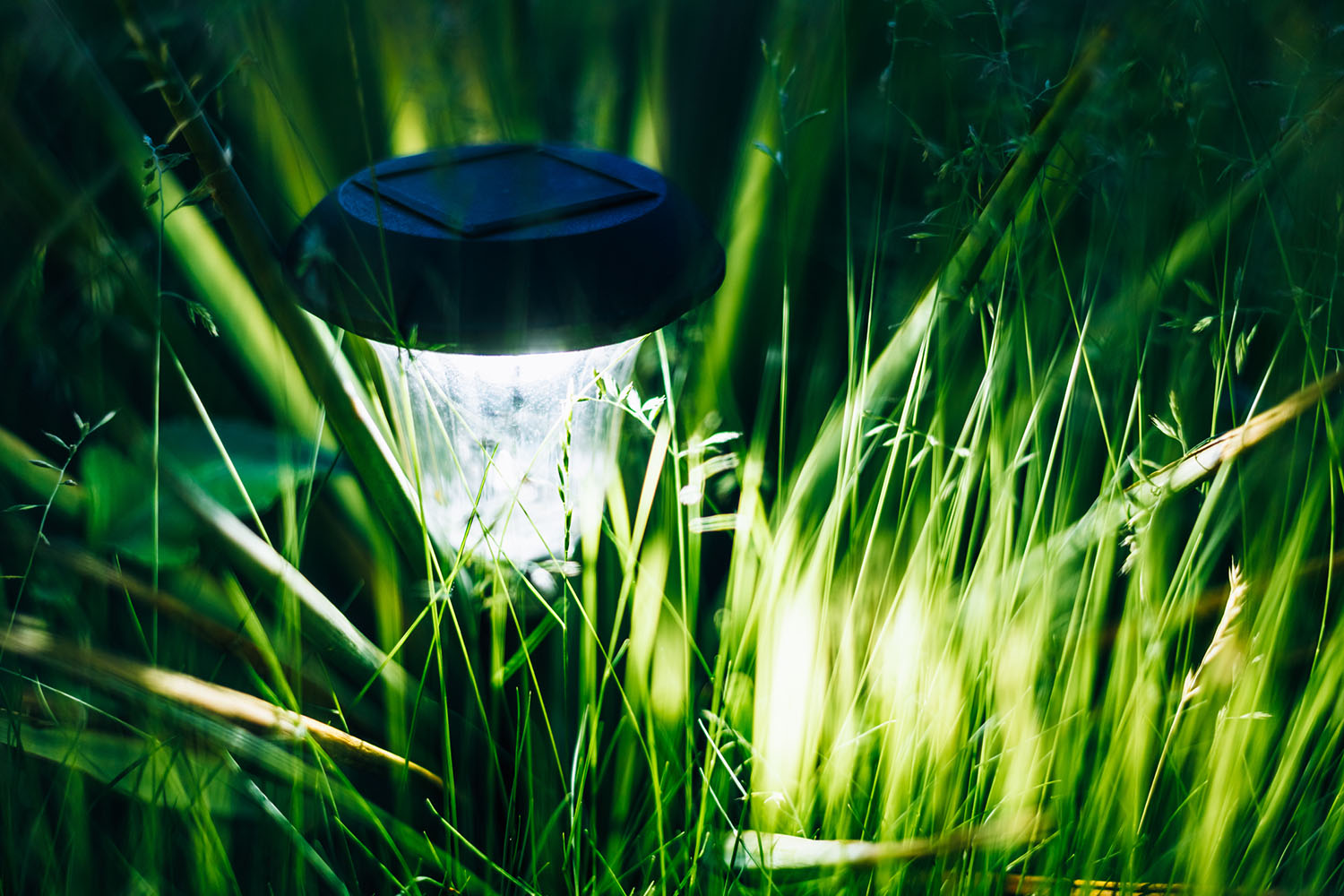 Everything you need to know about solar garden lights - Better homes and gardens solar lights ...