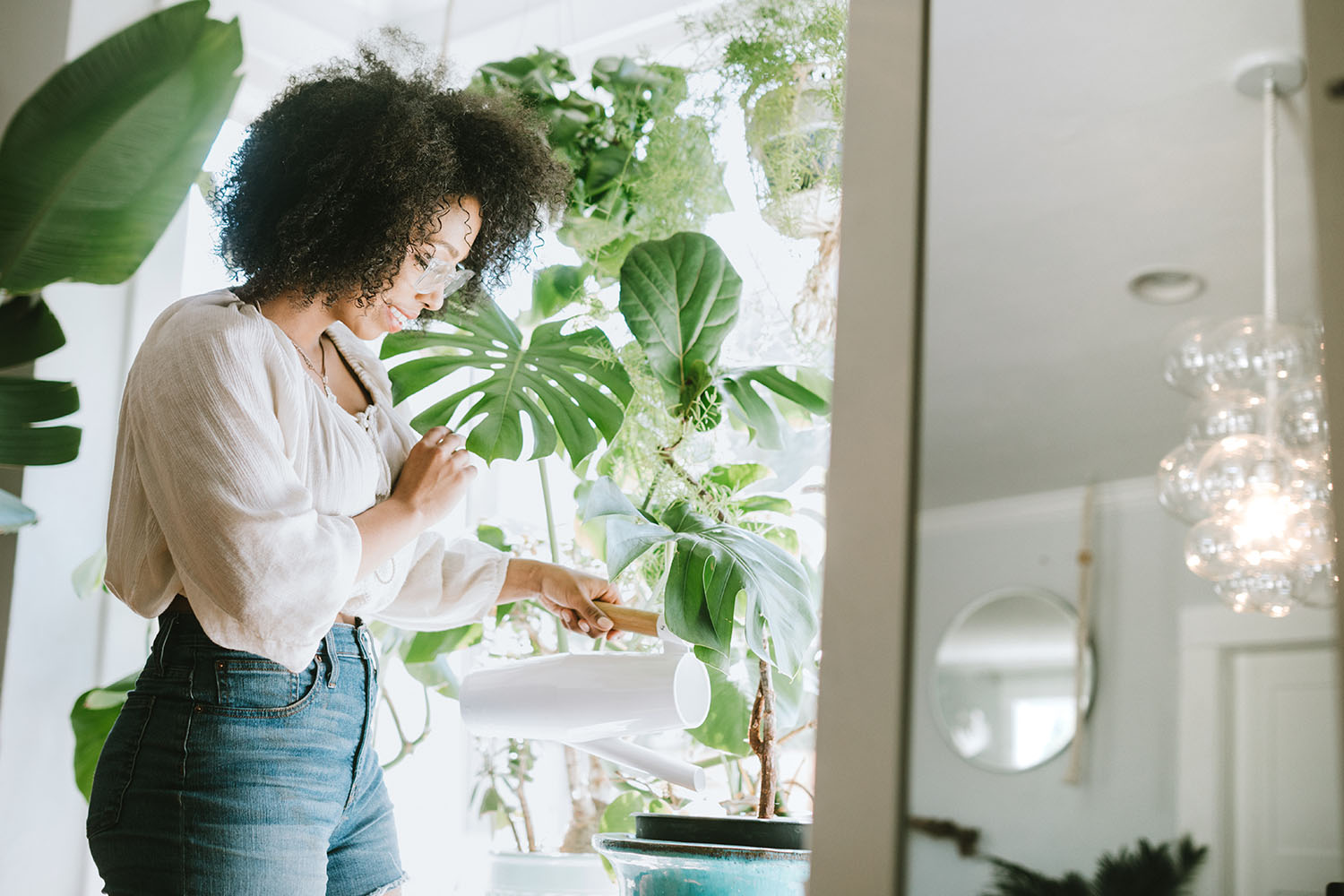 10 Of The Best Large Indoor Plants And How To Care For Them Better Homes And Gardens