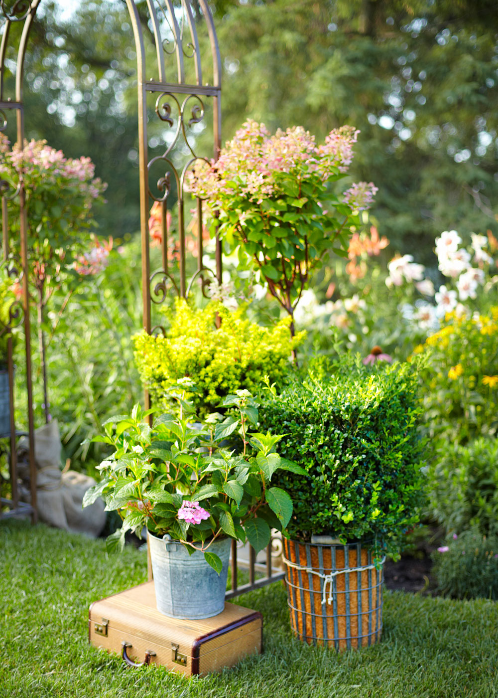 Turn your old containers into funky pots better homes and gardens for Better homes and gardens canisters