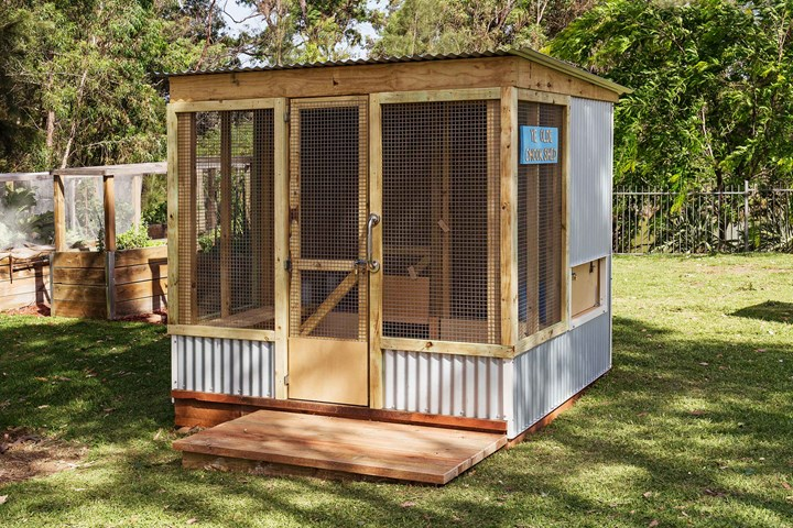 How To Make The Diy Chicken Shed Of Your Chook S Dreams