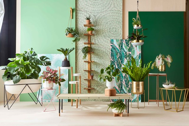 Fine How To Decorate A Room With Green Better Homes And Gardens Download Free Architecture Designs Viewormadebymaigaardcom