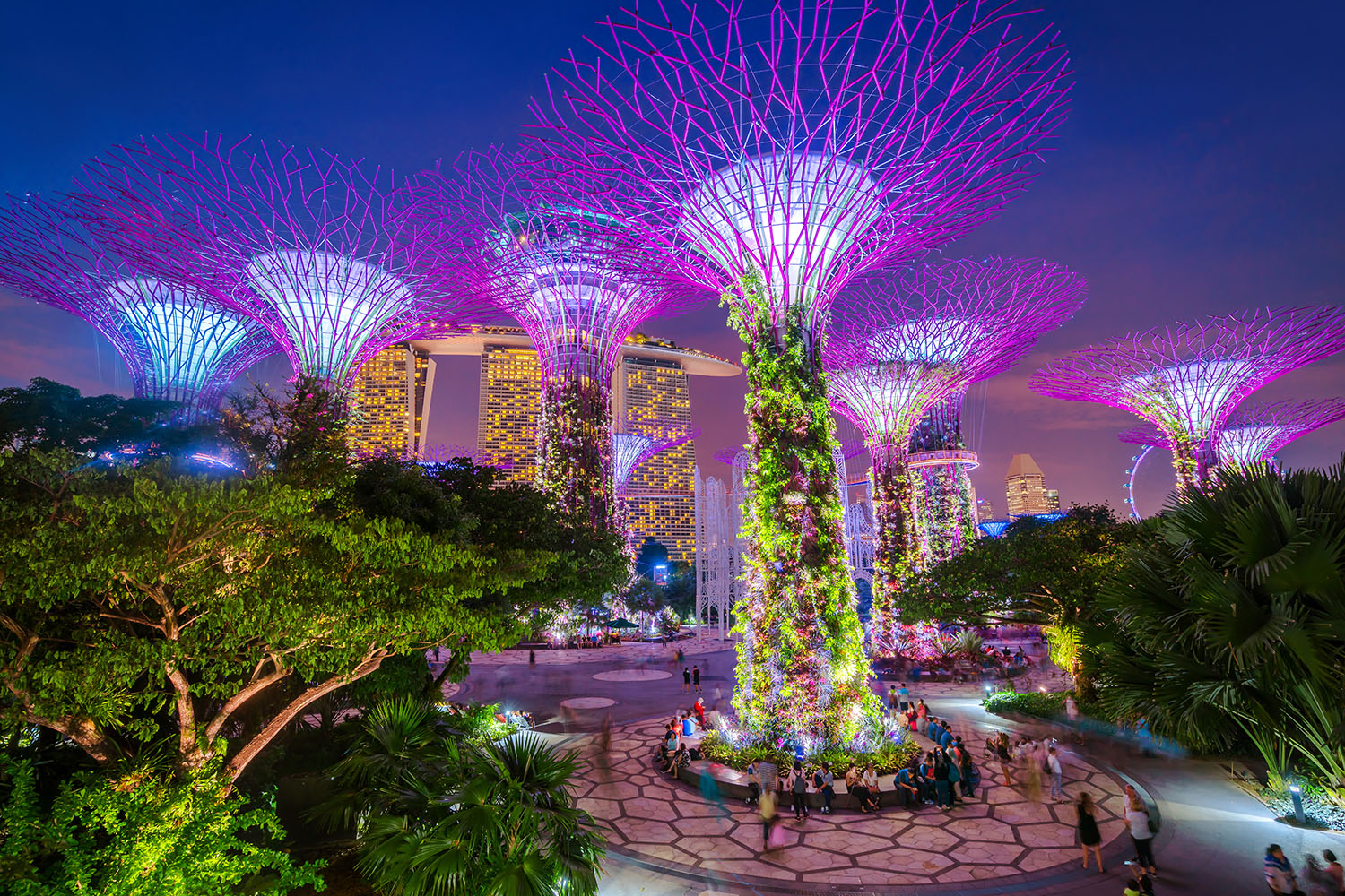 5 reasons to visit Singapore\u0027s Gardens by the Bay