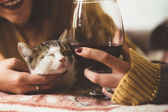You can help save abandoned animals just by choosing to drink this wine