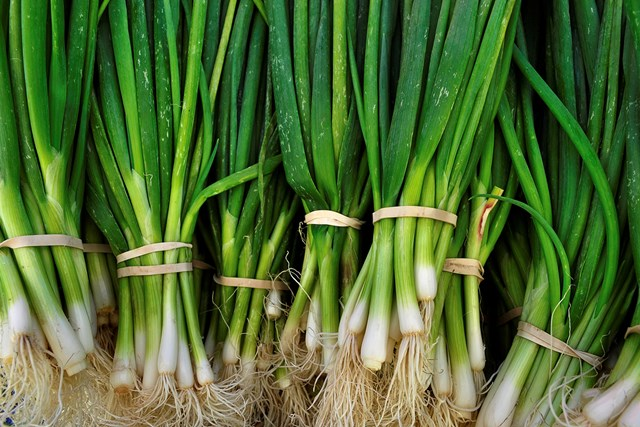 Can spring onions and shallots substitute each other in recipes?