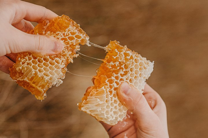 The price of honey is set to soar