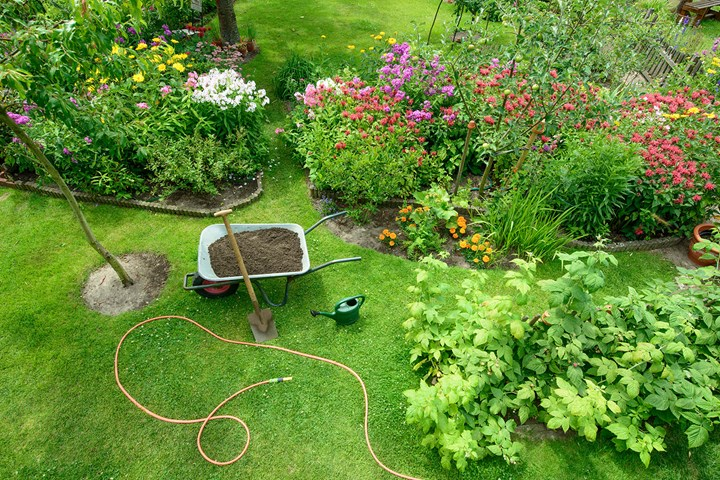 7 tips for drought-proofing your garden this summer