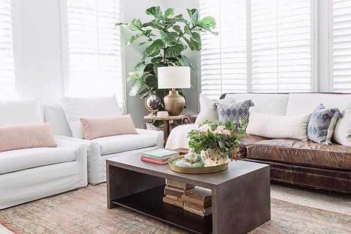 Feng shui living room elements