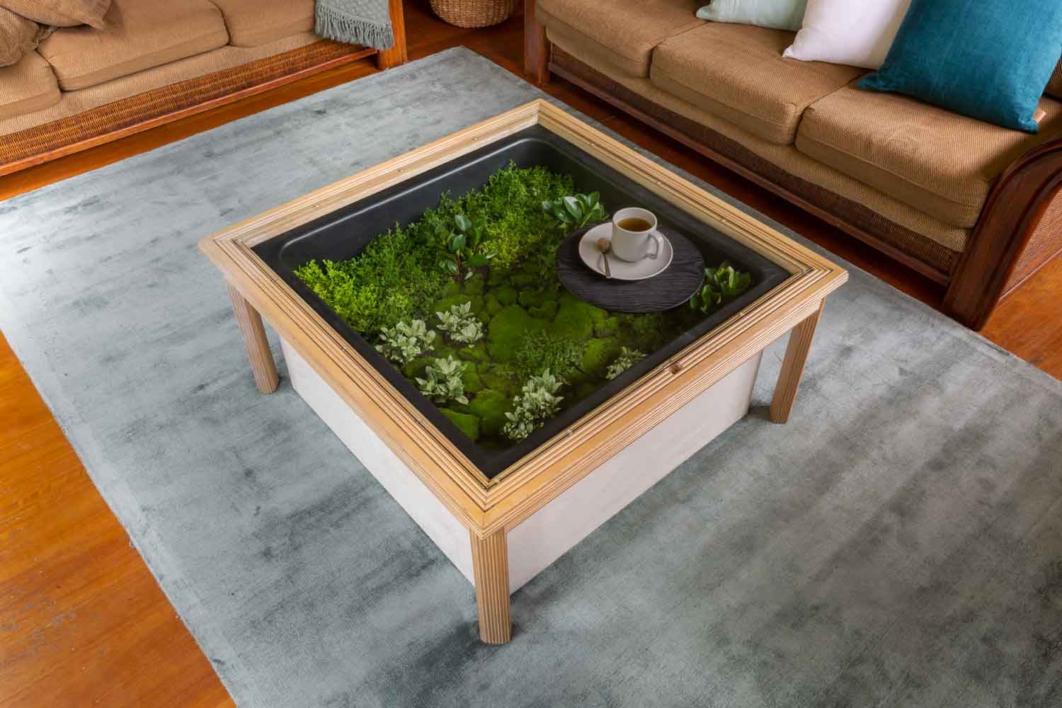 Coffee Table Terrarium Better Homes And Gardens