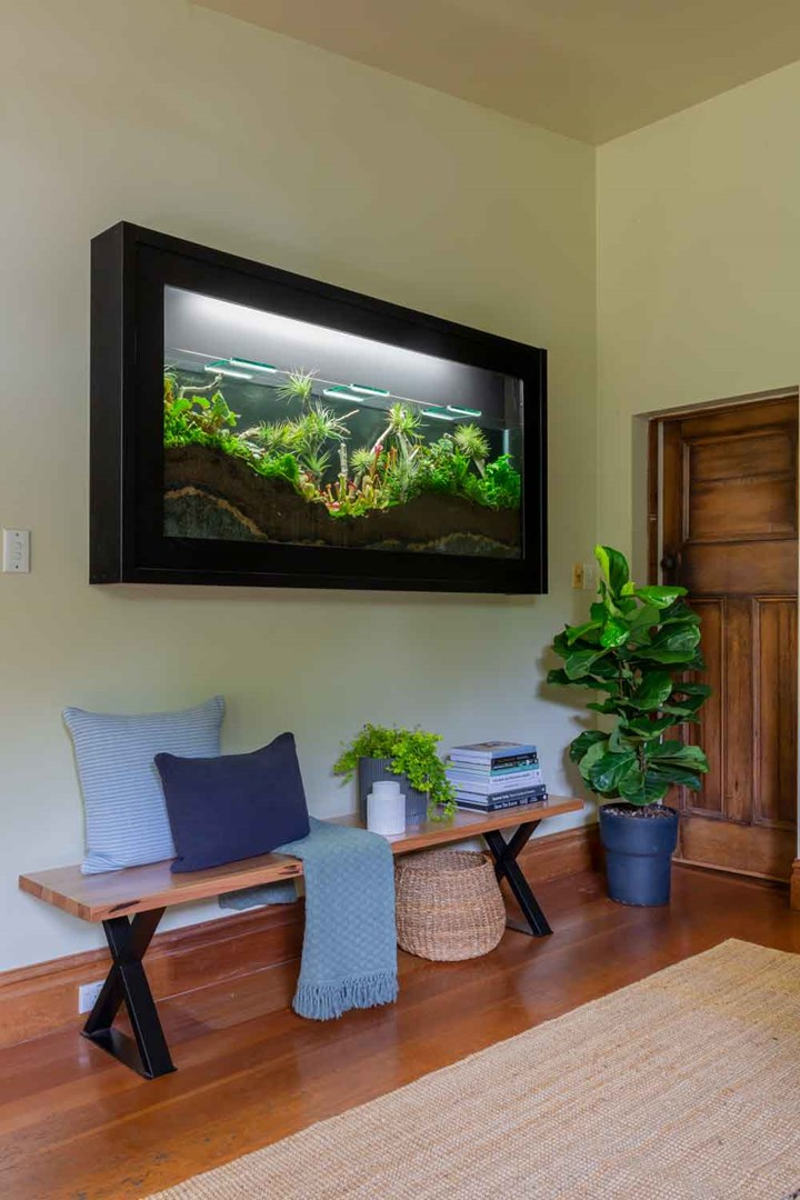 Fish tank terrarium mounted on a wall