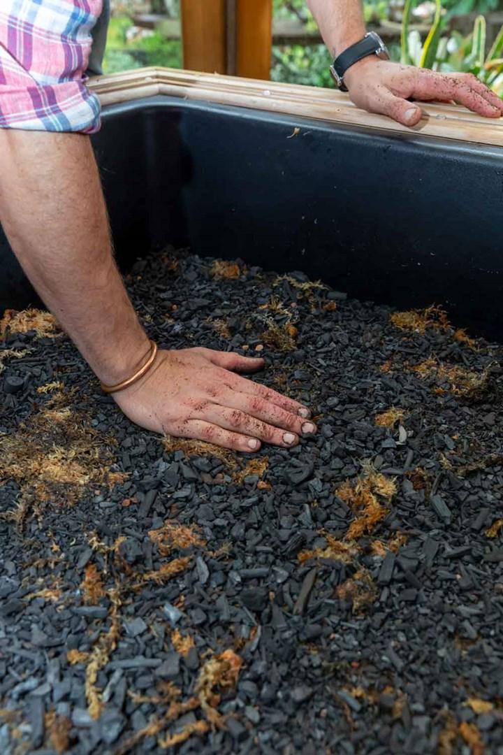 Horticultural charcoal in a terrarium