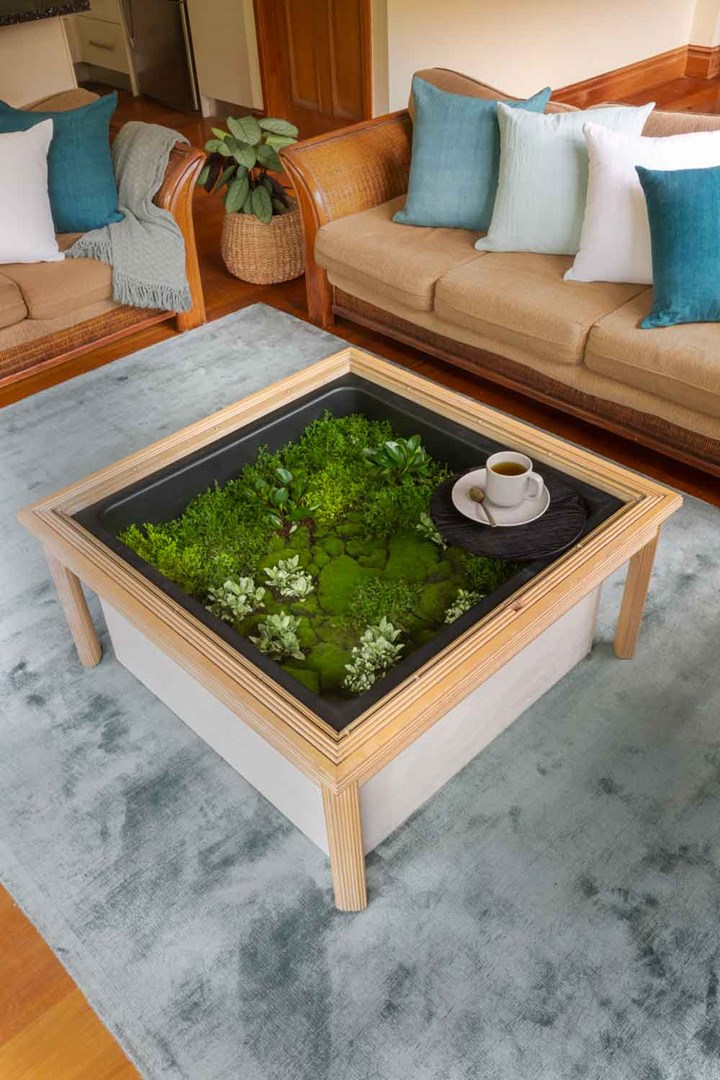 Coffee table terrarium