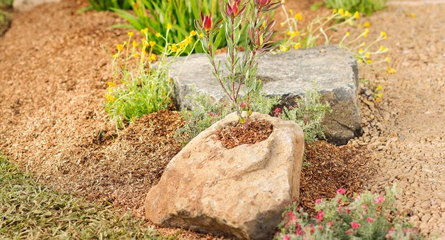 How To Carve Your Own Decorative Rock Planter