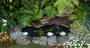 Build a stunning and serene backyard pond