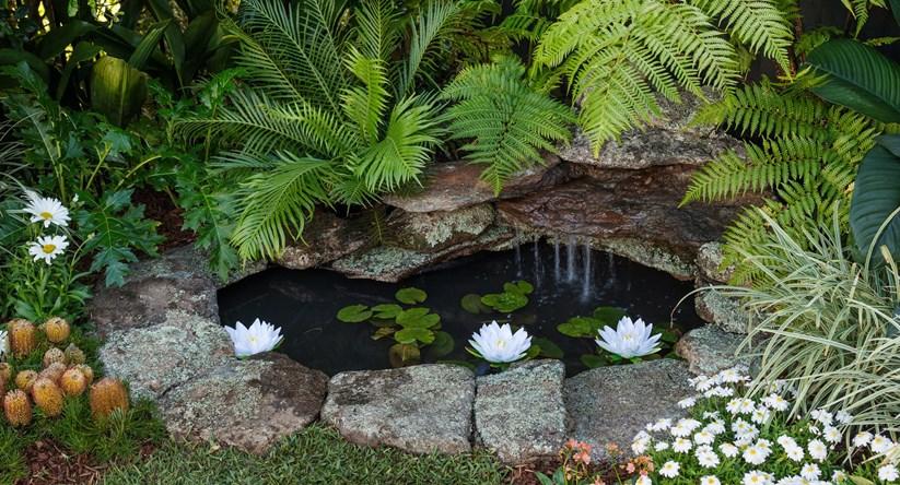 build a stunning and serene backyard pond better homes gardens