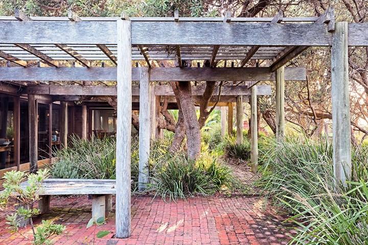 Philip Cox's garden Thubbul