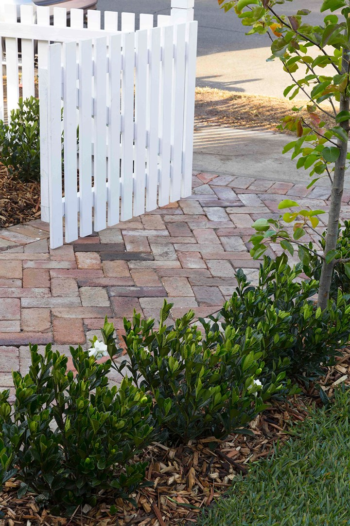 Recycled brick front path