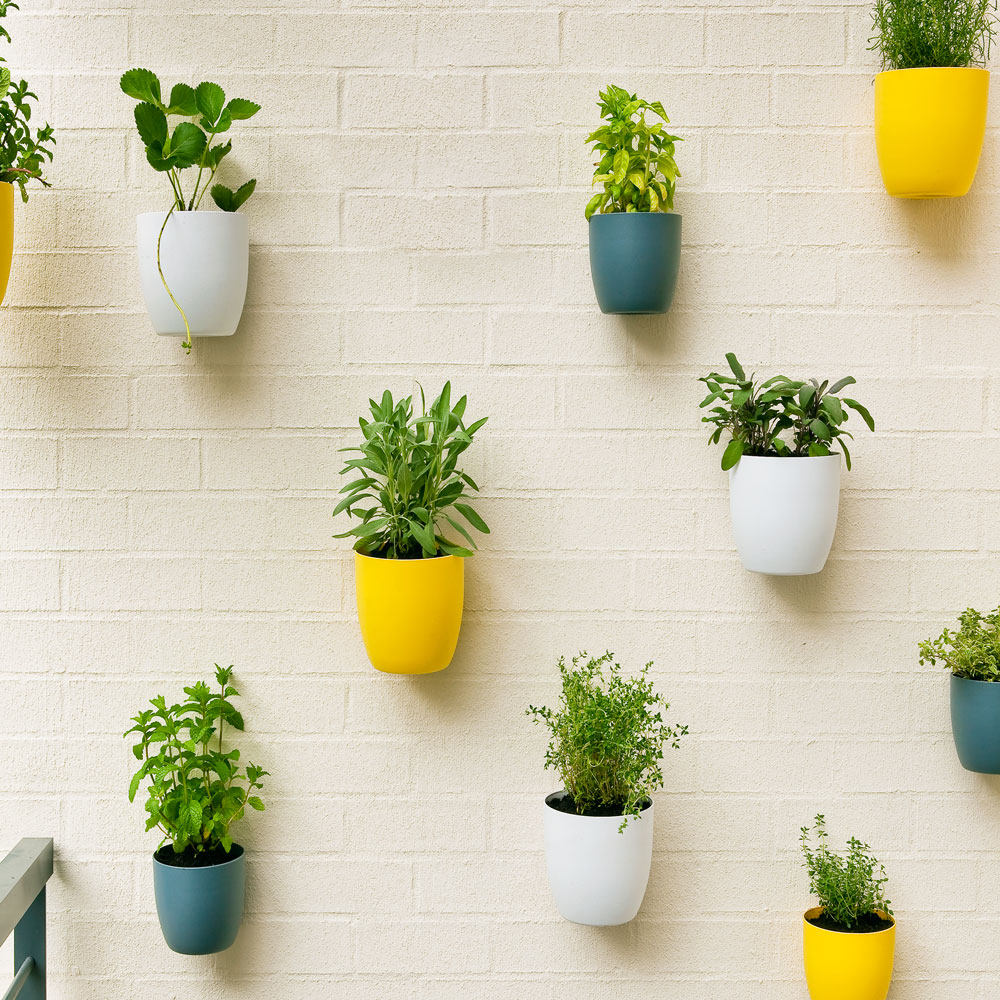 Potted wall project better homes and gardens - Better homes and gardens flower pots ...