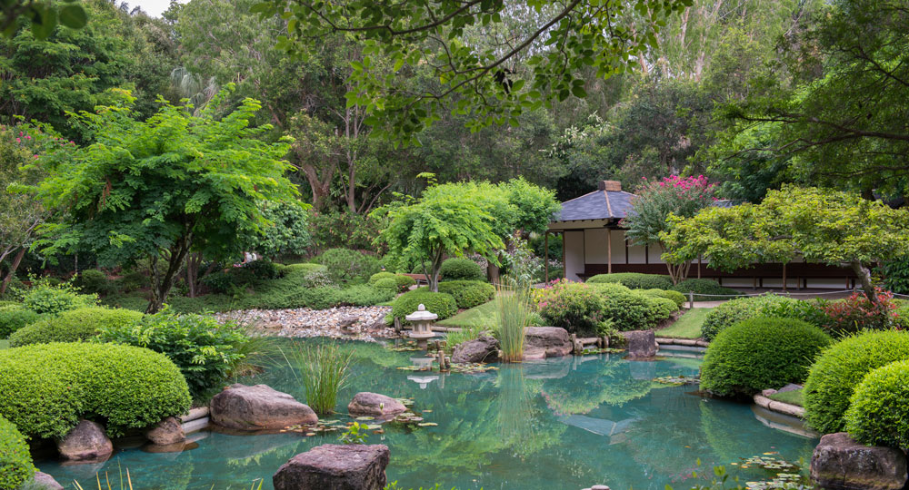 How To Create A Japanese Garden Diy Gardening Craft