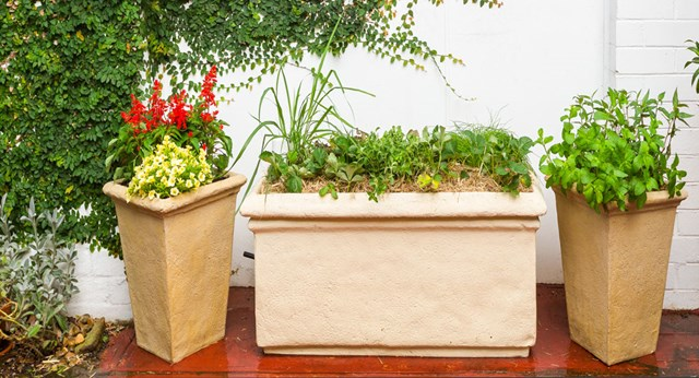 How to make a wicking-bed trough