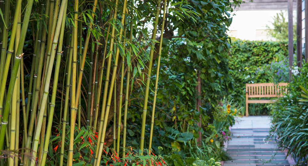 Different types of bamboo diy gardening craft