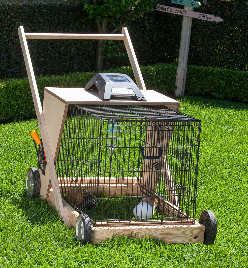 Keep your lawns short with the nifty guinea pig lawn mower for How to build a guinea pig house