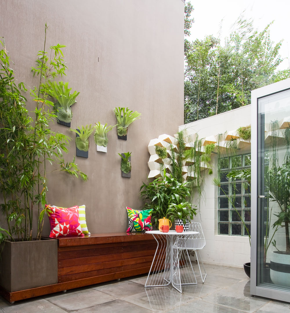 Try Growing Your Plants Up The Wall Better Homes And Gardens